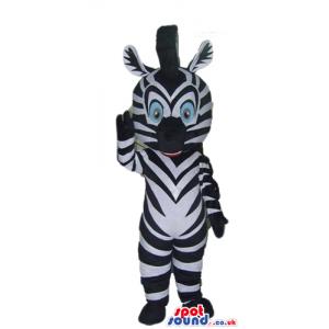 Zebra with light blue eyes - Custom Mascots