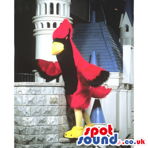 Red and black jay bird mascot with wings, yellow beak and legs