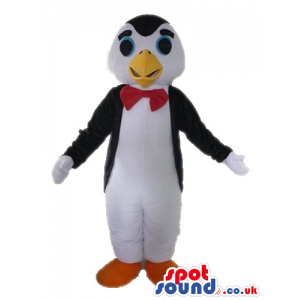 Black and white penguin with round light-blue eyes, a yellow