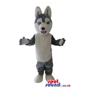 Grey fox - your mascot in a box! - Custom Mascots