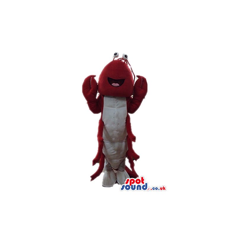 Red shrimp with round eyes and white feet - Custom Mascots