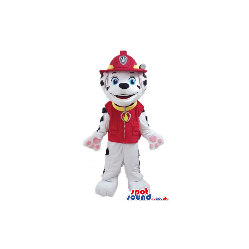Dalmata dog dressed as a fireman - Custom Mascots