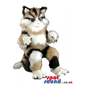 Percian cat mascot with mixed colours of brown,white and black