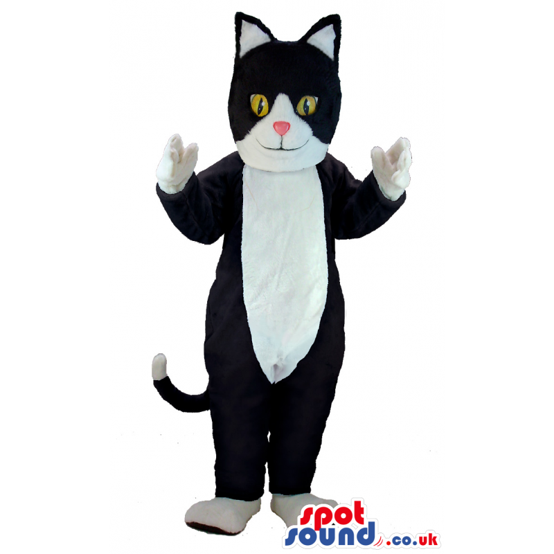 Black Cat Animal Mascot With White Belly And Yellow Eyes -