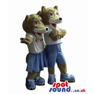 Couple Of Grey Fox Mascots Wearing Sport Clothes And Ice Skates