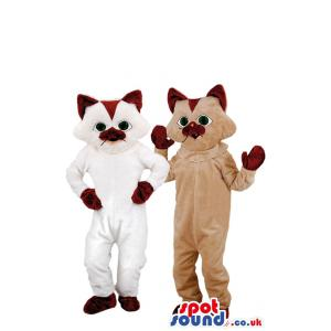 Two white and brown cat mascot with his hands in his waist -