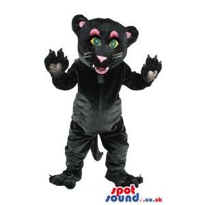 Wild cat mascot in black putting his hands in air & greeting us
