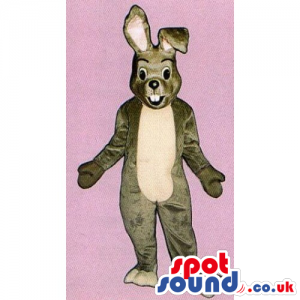 Customizable Plain Brown Rabbit Mascot With A Beige Belly -