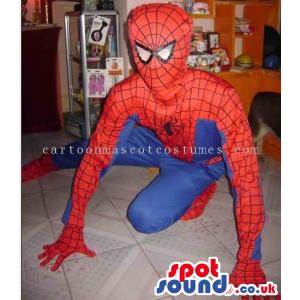 Spiderman Superhero Comic Cartoon Character Costume - Custom