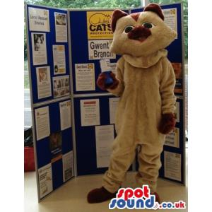 Brown cat mascot with black eyes standing and showing his paws