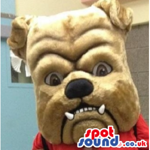 Brown Angry Bulldog Mascot Plush Head - Custom Mascots