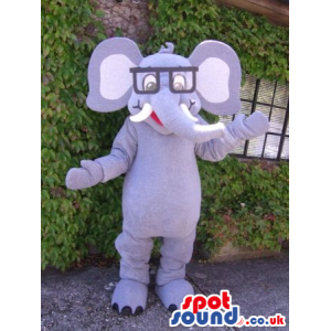 Funny Grey Elephant Mascot Wearing A Pair Of Squared Glasses -