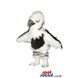 Black and white crow mascot spreading his wings ready to fly -