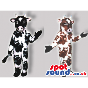 Two Original Cow Costumes Or Mascots In Brown Or Black Spots -