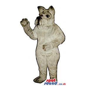 All Grey Schnauzer Dog Plush Mascot With Hairy Mouth - Custom