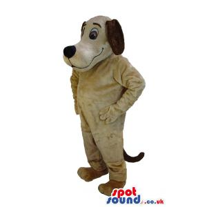 Brown Scooby doo dog mascot with bright blue eyes - Custom
