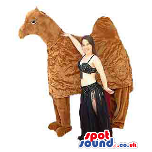 Dromedary Mascot And An Adult Size Belly Dancer Costume -