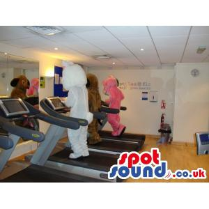 Three cute mascots doing exercise in the gym in a treadmill -