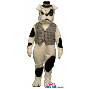 White And Black Bulldog Mascot Wearing A Vest, Hat And A
