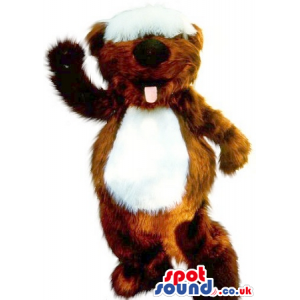 Cute Brown Hairy Squirrel Plush Mascot With Ya White Belly -
