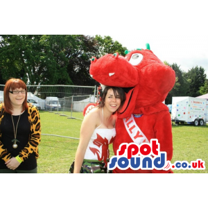 Friendly red welsh dragon with green horns and tongue out -