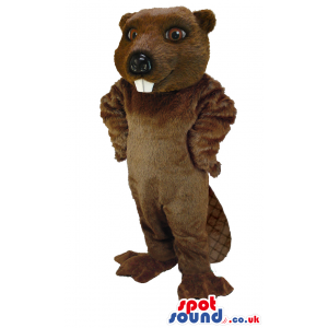 Tall standing beaver mascot with white teeth and flat, thick
