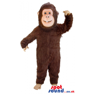 Tall brown monkey mascot with black eyes and white tooth -