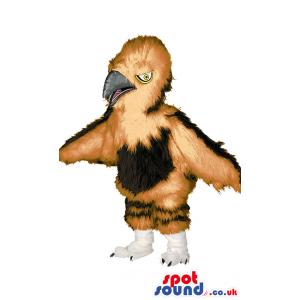 Menacing brown eagle with black beak,white feet with black paws