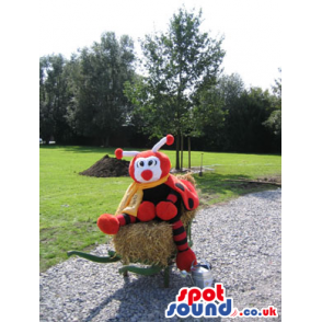 Orange And Black Bug Plush Mascot With A Round Nose And