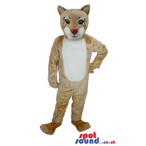 Beige Puma mascot with white underbelly,snout and inner ears -