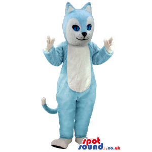 Cute looking baby blue cat mascot with white paws and
