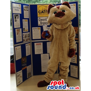 Tall standing beige cat mascot with brown ears,nose and paws -