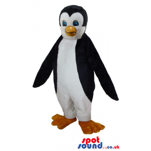 Cute penguin mascot with innocent blue eyes and yellow beak -