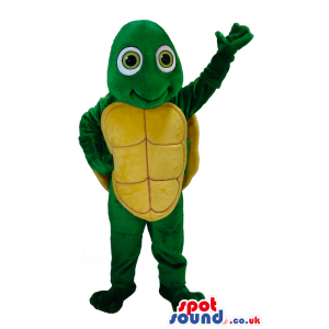 Friendly looking turtle mascot with innocent green eyes -