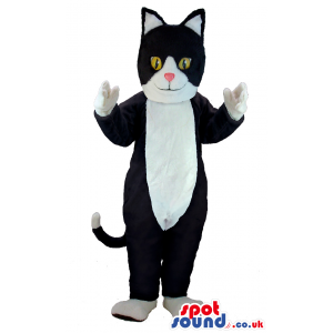 Friendly black and white cat mascot with a smiling face -