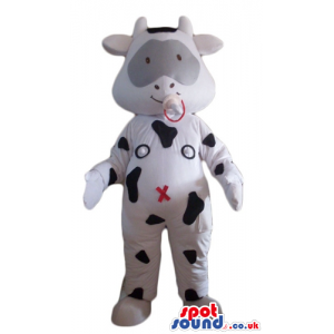 Happy baby white cow with black spots and a grey patch round