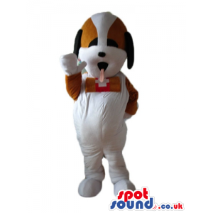 White dog with brown spots round the eyes and brown eyes with