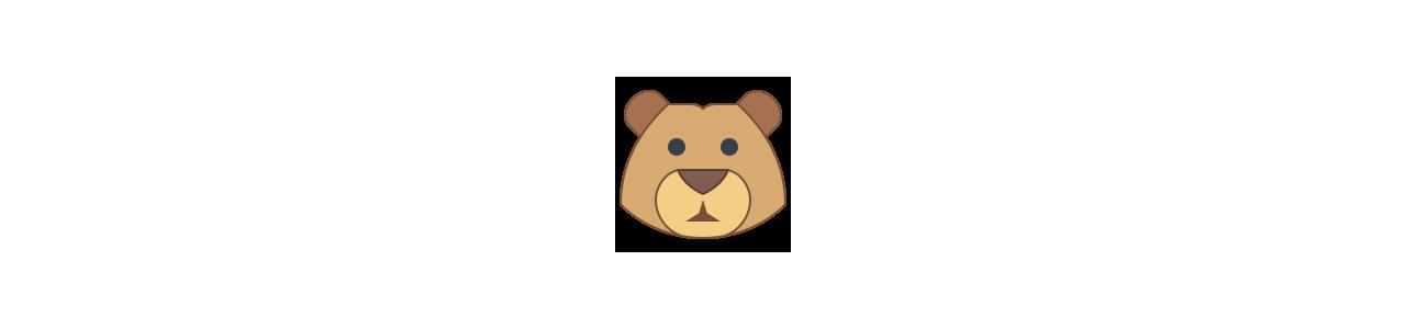 Buy Mascots - SPOTSOUND UK -  Bear mascot