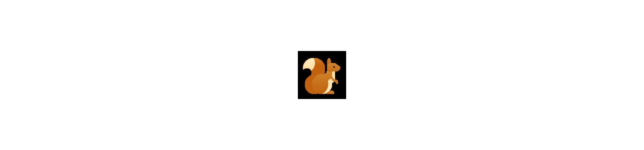 Buy Mascots - SPOTSOUND UK -  Mascots squirrel