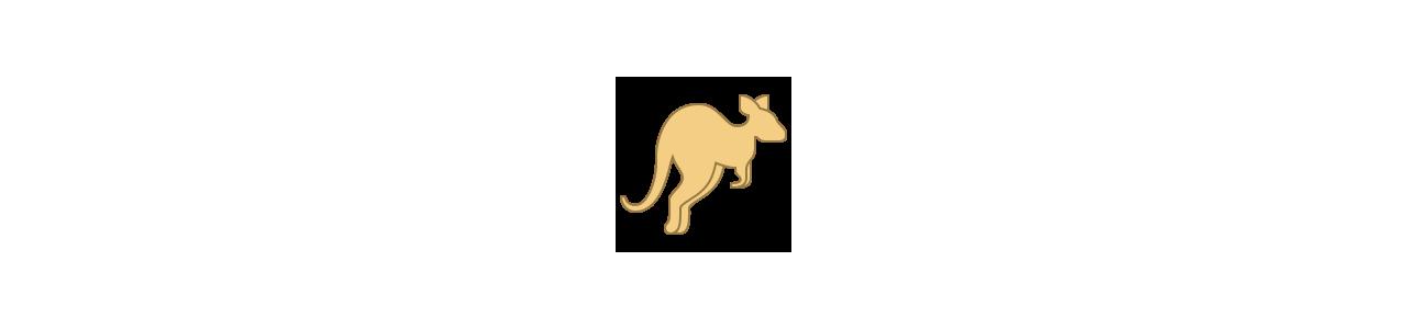 Buy Mascots - SPOTSOUND UK -  Kangaroo mascots