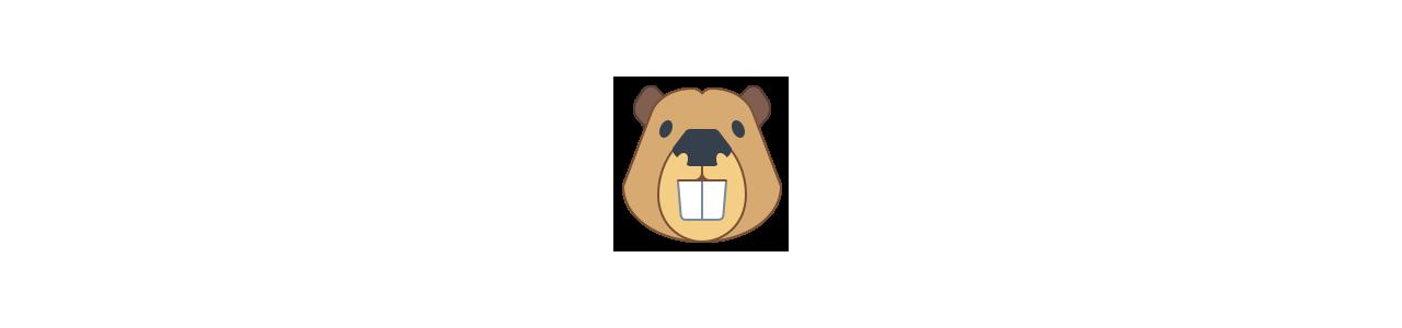 Buy Mascots - SPOTSOUND UK -  Heads of mascots